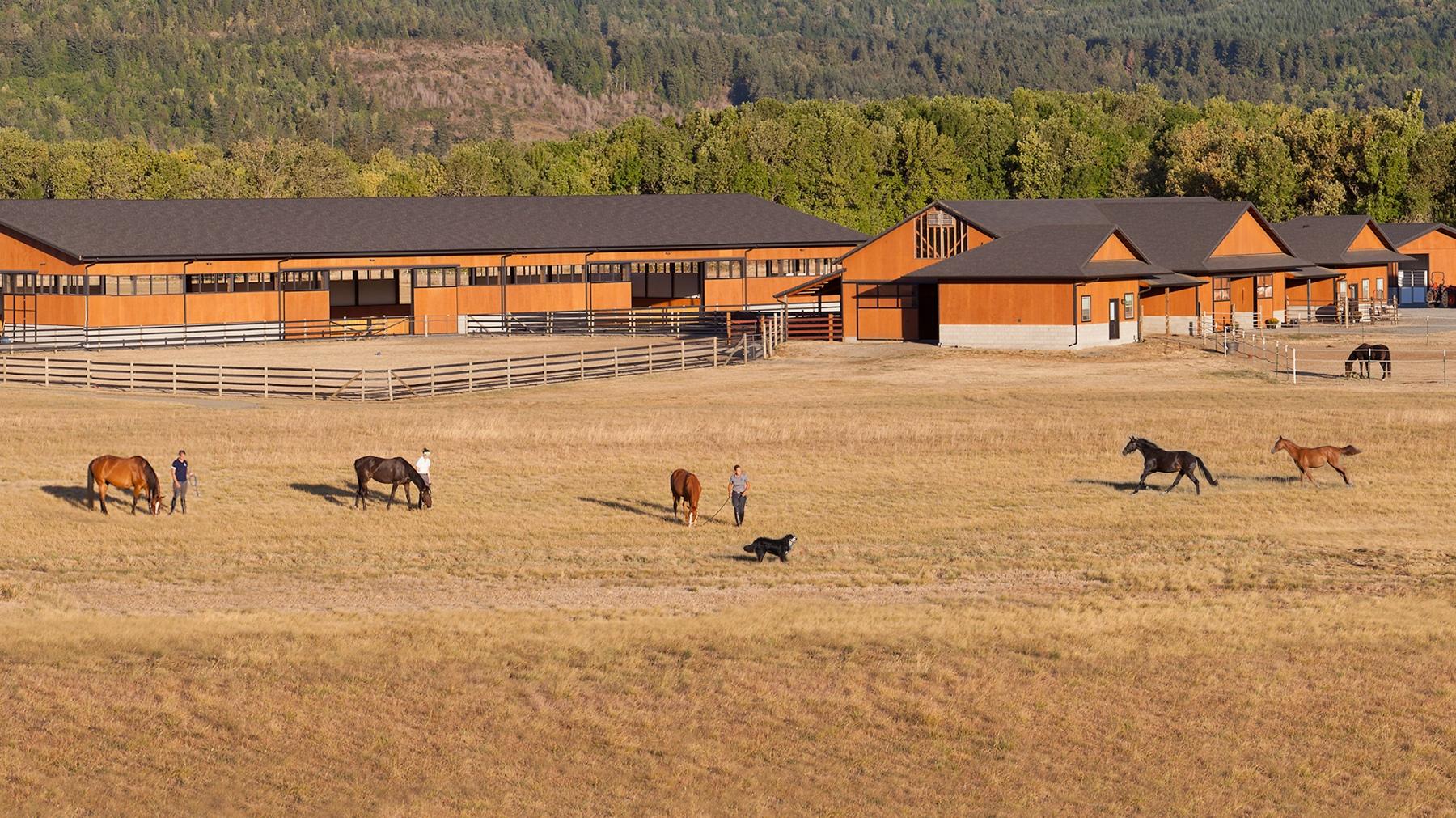 Silver Tail Farm Environmental